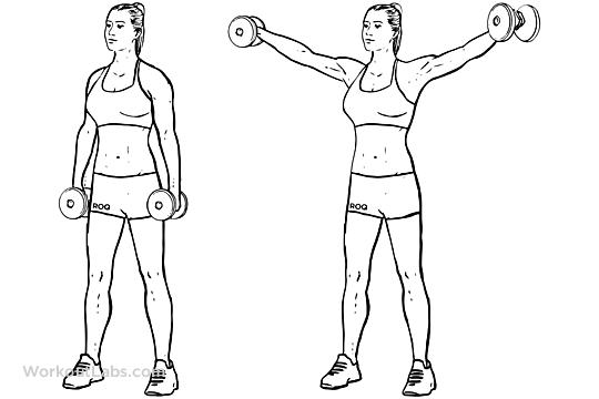 musculation dos épaules élévations latérales