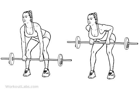 musculation dos épaules tirage dorsaux