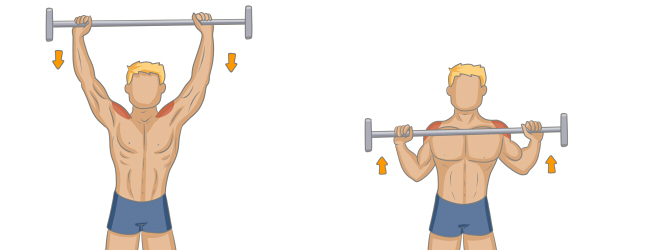 musculation dos épaules développés